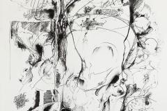 Feder | Palimpsest,  48x64cm 2019/1986