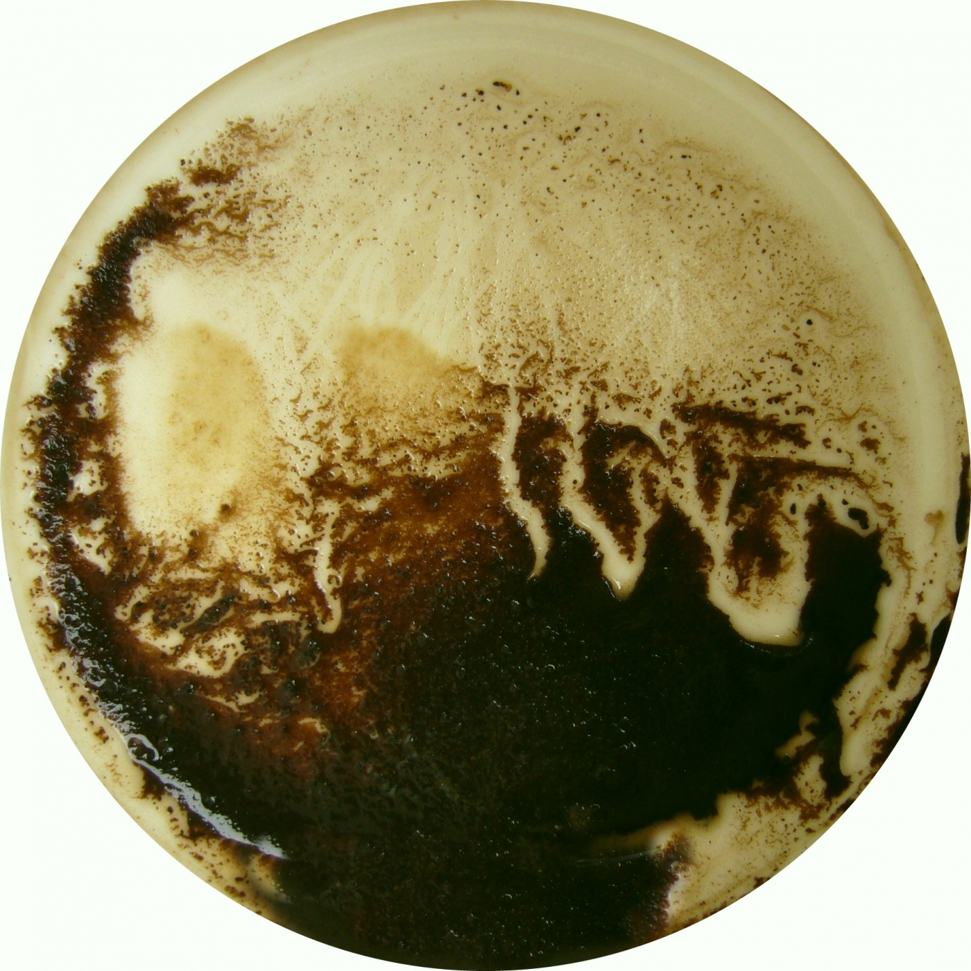 2008_Kaffeesatze9