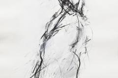 Z_1981_Fig_Grafit_d1_001_